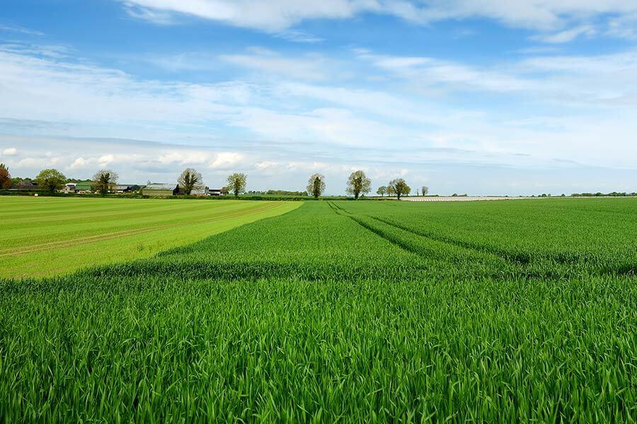 ireland agriculture